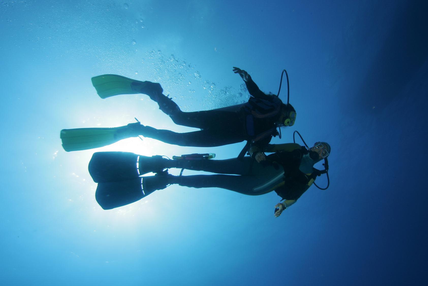 2 Taucher unter Wasser